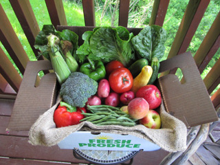 Small box of fruit and produce